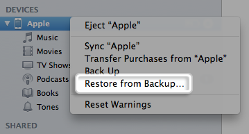 restore deleted video with iTunes backup