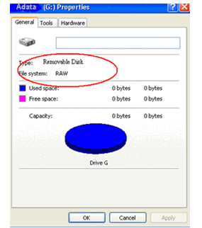 RAW File System Recovery in Windows 10/8/7