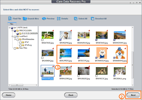 Best Memory Card Photo Recovery - Recover Deleted Photo